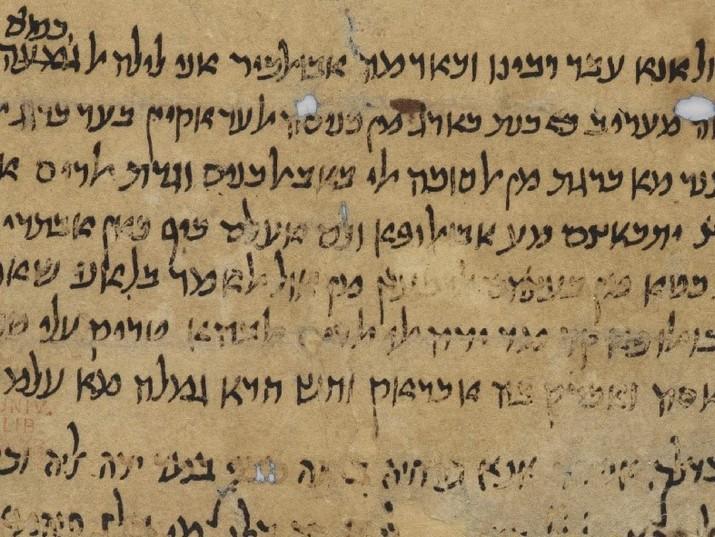 Sukkah Scuffles: Surprising Testimony from the 12th Century