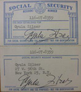 כרטיס ביטוח הלאומי האמריקני של צילצר דיולה