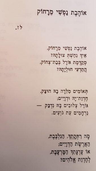 """שלמה שטיין, מתוך: שירת היחיד, תשמ""""א."""