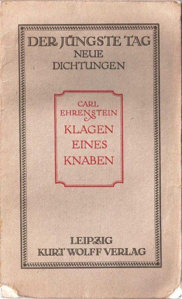 """כריכת ספרו של קרל ארנשטיין, תלונותיו של נער, שהיה הכרך השישי בסדרת """"היום האחרון"""""""