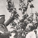 امتهان الزراعة؛ ثقافة مزروعة في المدارس العربية بالفترة الانتدابية